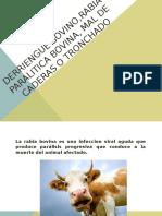 Derriengue Bovino,Rabia Paralitica Bovina, Mal de Caderas