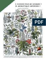 Quelle Plante Choisir Pour Me Soigner - VAPORISATION