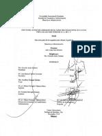 Efecto del estilo de liderazgp en el clima organizacional en la caja popular San José.pdf