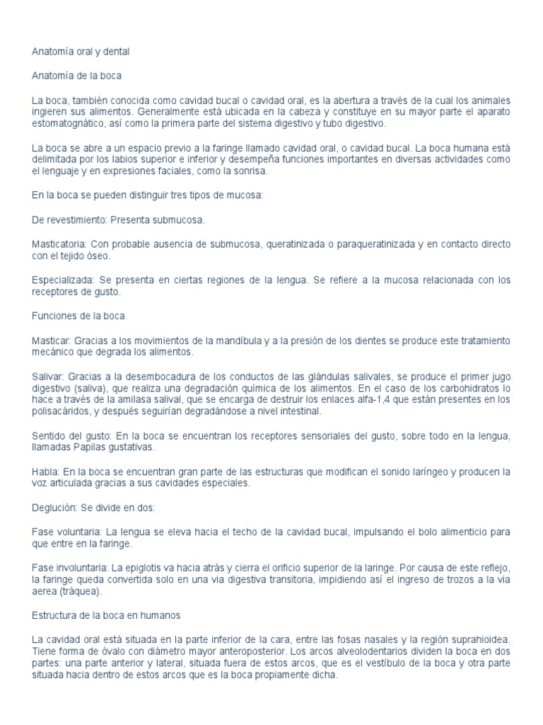 Vistoso Techo De La Anatomía De La Boca Componente - Imágenes de ...