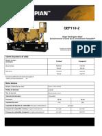 GEP 110-2.pdf