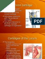 Respiratory System 2