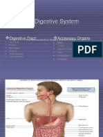 The Digestive System Part 1