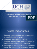 Cadenas Musculares MMII