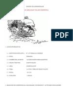 SESIÓN DE APRENDISAJE.docx