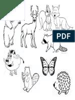 Recortes Animales Bosque