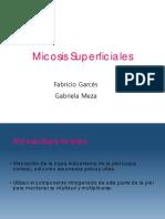 micosis superficiales 2