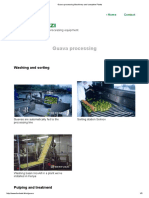 Guava Processing Machinery and Complete Plants