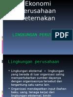 Bab II. Lingkungan Perusahaan