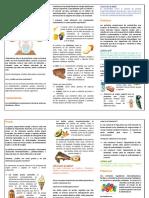 CLASIFICACION DE LOS ALIMENTOS.pdf