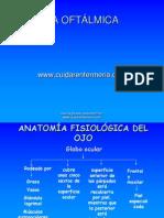 anatomiafisiologicadelojo