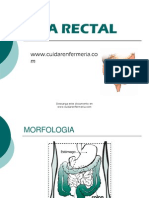 Via Rectal Term in Ada