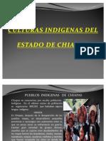 culyuras indigenas de chiapas