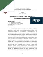 Ensayo de normalizacion contable en el ambito de contabilidad gubernamental