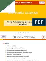 T4 Columna Enf 12-13