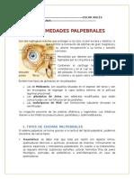 enfermedades-palpebrales