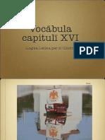 Vocabula Cap XVI LLPSI