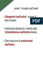 Bone Formation Spr07