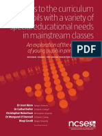 Ware- Report Access to the Curriculum-Ireland