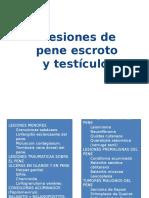lesiones-del-pene-y-escroto.pptx