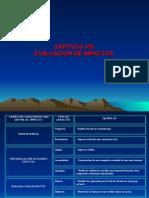 Evaluacion Impactos Pregrado CAP VIII