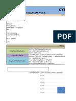 Capital Market Ratio Analysis Tool