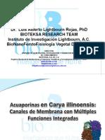 Presentacion_de_Acuaporinas_Nogal.ppt