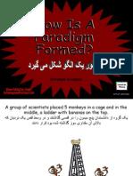 Paradigm08-15-07