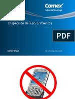 Inspeccion 2010