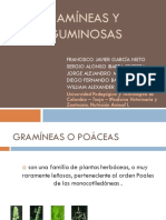05_Gramíneas y Leguminosas