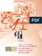 Imagen Personal. Diseño Curricular Base Técnico Superior en Estilismo y Dirección de Peluquería