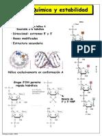 RNA-transcripcion.pdf