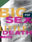Big Sex Little Death - Susie Bright
