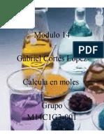 M14S3 Calcularenmoles