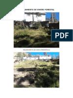 Mejoramiento de Vivero Forestal