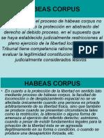 Garantías Constitucionales(1)
