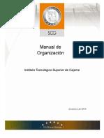 Manual de Organizacion de Itesca