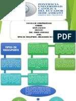 TIPOS DE TRANSPORTE Y ORGANISMOS DE TRANSITO.pdf