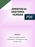 Aula1-anatomia