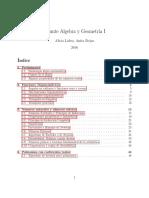 Apunte AlgGeo1 Hasta Algoritmo de Division Polonomios 2016