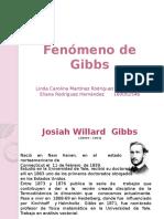 fenomenogibbs-120824214948-phpapp01