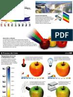 1.-El-proceso-del-color.pdf