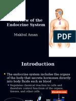 01 Endocrine Overviews