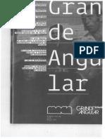art_grand_angular_anticinema.pdf