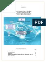 Proyecto de Auditoria de Sistemas Sobre Las Telecomunicaciones