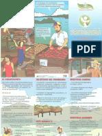 Tríptico Agroecología.pdf