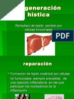 Regeneracion histica