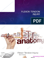 Flexor Tendon Injury