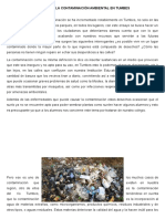 Ensayo de La Contaminación Ambiental en Tumbes