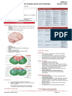 Examination of Cerebellum and Meninges